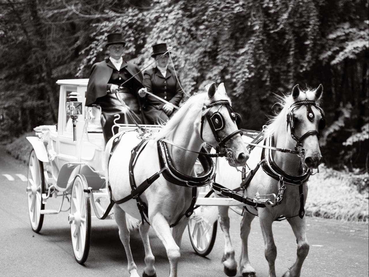 Wedding carriage at Kinitty Castle